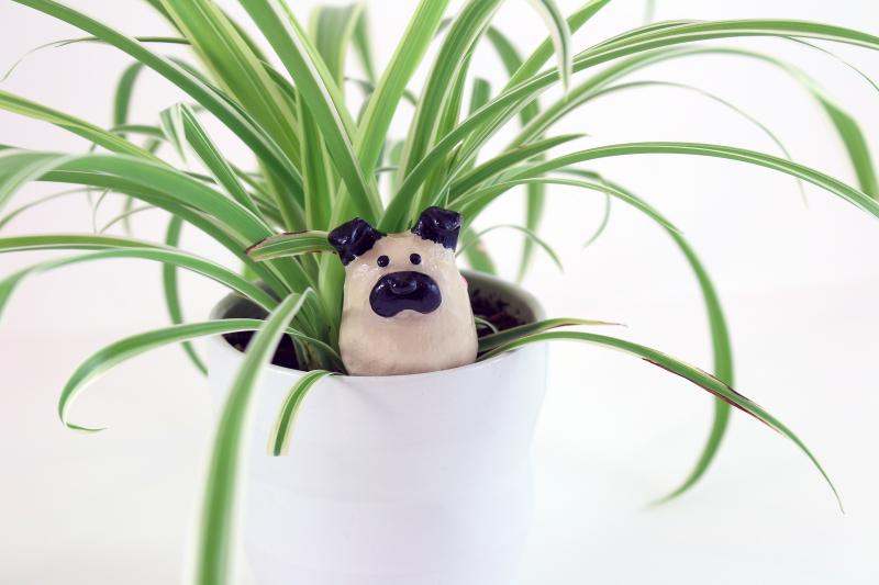 Pug Brooch in Plant Close Small